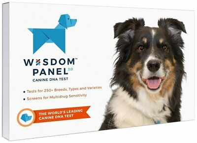 Wisdom Panel 3.0 Breed Identification DNA Test Kit Other Dog Health Care Pet
