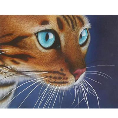 New! Stunning Crystal Art Kit – Dramatic Cat Face Picture