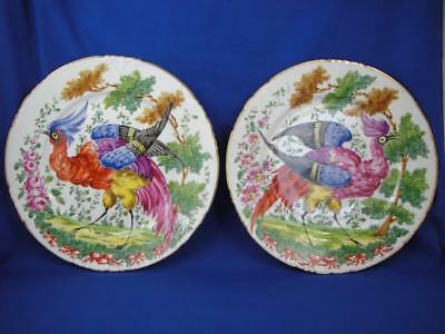 18th Century Hand Painted Bird Gold Gilded Chelsea Anchor Plate Pair of 2
