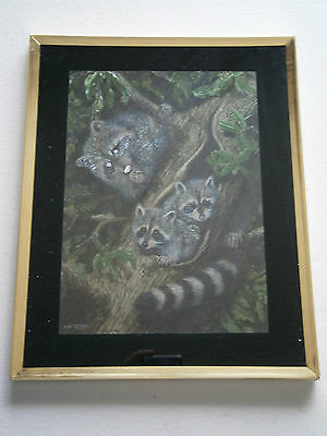 Framed Shiny Foil Picture Print of 3 Raccoons In A Tree Signed by Dick Twinney