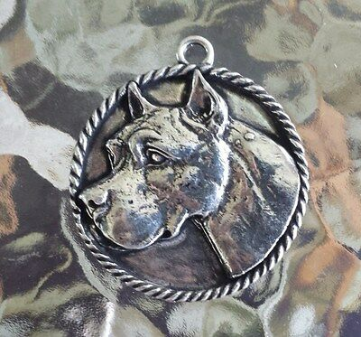 FAMILY HOUSE PET PUREBRED 1 PIT BULL TERRIER DOG PEWTER PENDANT or POCKET COIN.