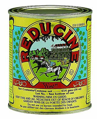 Reducine Absorbent 16 oz can | Topical Stiffness/Soreness Relief for Horses