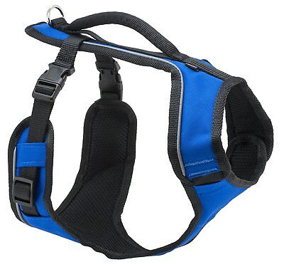 EasySport Harness Large Blue for Dogs