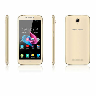 Ding Ding 5.0 Inch 8GB Touch Screen Display HD Smart Phone 2 sim card Spain