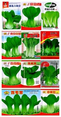Bok choy pak choi ShangHaiQing Chinese cabbage Seeds Garden Vegetable 原装白菜上海青菜种子