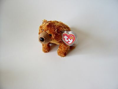 Sequoia Ty Beanie Baby, New, MWMT, 2001, Brown Bear, 5+, Boys and Girls
