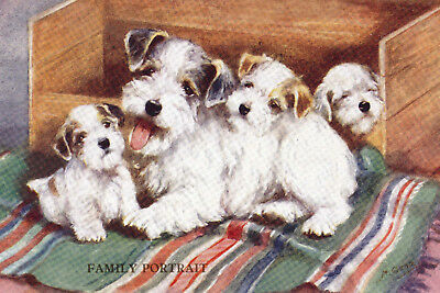 Sealyham Dog Family Portrait by Lucy Dawson 1930 8  LARGE New Blank Note Cards