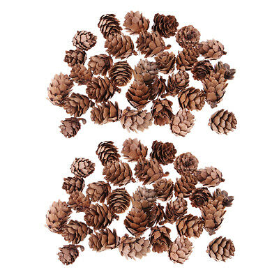 60pcs Natural Decorative Pine Cones Pinecone for Christmas Ornament Crafts