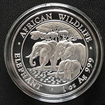 2013 Somalian Elephant 1 oz .999 Silver Brilliant Uncirculated Mint Coin Africa