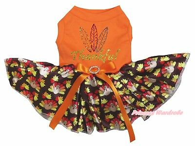 Thanksgiving Thankful Orange Cotton Top Brown Turkey Tutu Pet Dog Puppy Dress