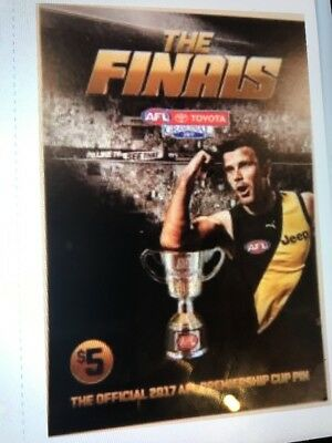 2017 AFL Grand Final Pin Richmond Premiers