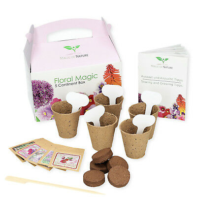 GIFT SET Floral Magic - an original gift idea for virtually any occasion **TOP**