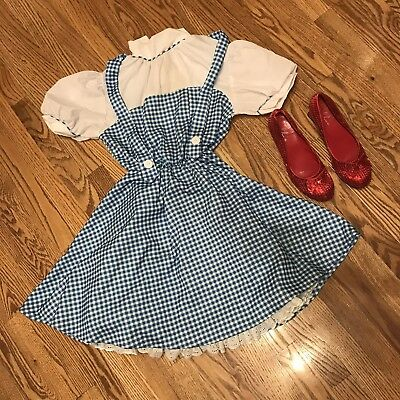 e30ce482826 Rubie s The Wizard Of Oz Dorothy Costume Dress W  Ruby Red Slippers Women s