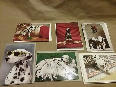 Dalmatians Blank Notecards and Christmas Cards VINTAGE