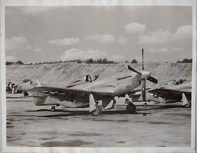 Wwii North American P-51D Mustang Fighter Airplane Vintage Photo