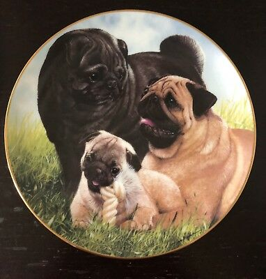 Danbury Mint Proud Pugs And Pumpkin Patch Pug Pugs Plates By