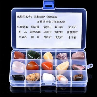Rock Collection 15pcs Mixed Natural Mineral Ore Specimens Gemstones with Box