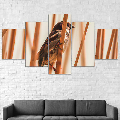 Bird on Bamboo Canvas Print Painting Framed Home Decor Wall Art Poster 5Pcs