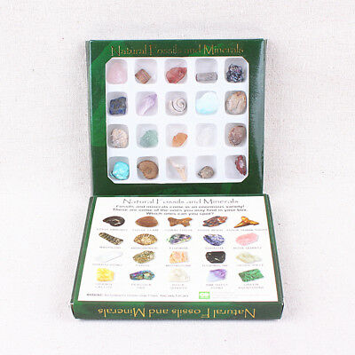 2018  Educational Geology Science Kit Rock And Mineral Collection Toy