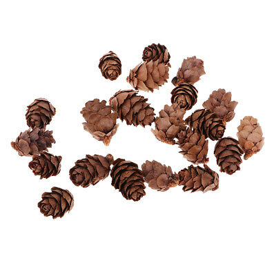 50x Natural Decorative Pine Cones Pinecone for Christmas Ornament Craft 20mm