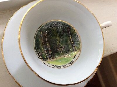 TOTEM POLES STANLEY PARK VANCOUVER - Hand Painted English Cup Saucer Vintage
