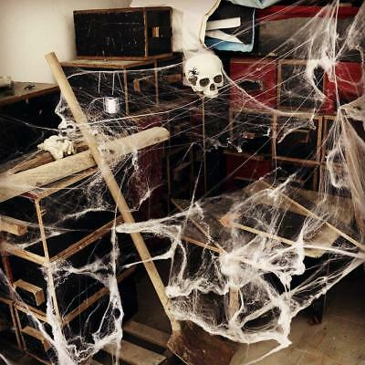 Halloween Spider Web with Black Spider Stretchable Cobweb Party Decoration