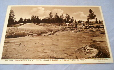 Antique Postcard Yellowstone Park Haynes Photo #504 Mammoth Paint Pots Low Basin