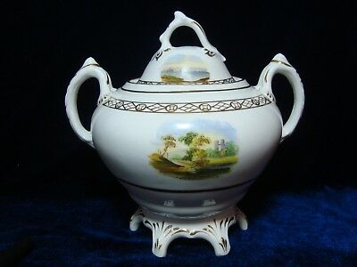An Antique Victorian Hand Painted Porcelain Sucrier, Sugar Bowl & Cover.