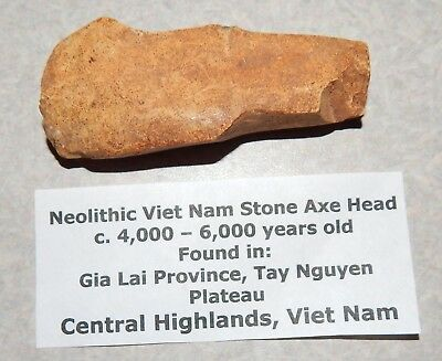 Dug Ancient Neolithic Vietnam STONE AXEHEAD c. 4000-6000 Years Old