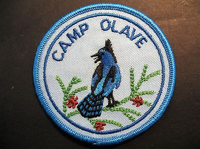 Girl Guides Canada Camp Olave Badge Bird Jay Brownies Scouts