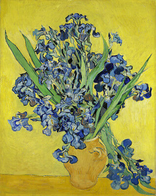 Vincent Van Gogh Oil painting on canvas Impressionist Beautiful Irises 28x36""