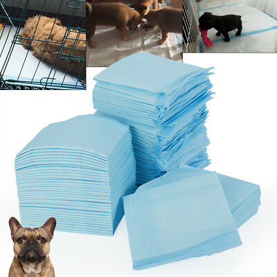 100X Pet Puppy Training Pee Pad LARGE PUPPY PADS TOILET For Dog Cat 33*45cm