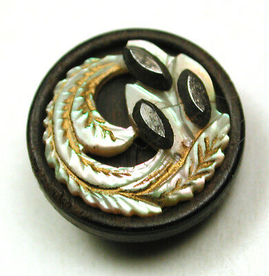 """Antique Button  Beautiful 3 Material Iridescent Feather Wood Base & Steels 9/16"""""""