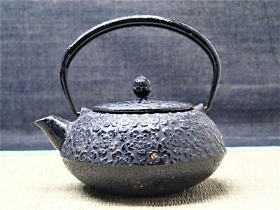 Tetsubin Kyusu Japan ZEN Cast Iron Wabi Tea Pot Kettle Chagama Tea Ceremony t400