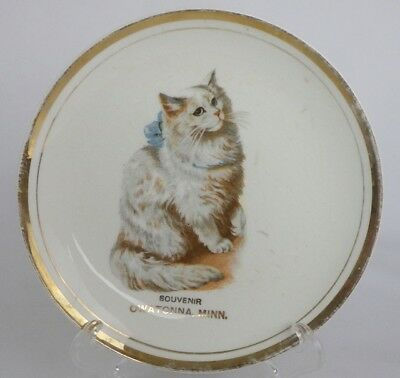 Vintage Owatonna, Minn. Souvenir Plate Of White Cat With Bow