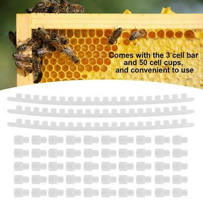 3Pcs Beekeeping Plastic Cell Bar W/ 50pcs Cell Cups Queen Rearing Tool Beekeeper