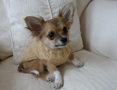 """7"""" Chihuahua Puppy Teacup Small Dog. Cat Jumper Coat Sweater. Warm Hand Knitted"""