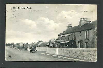 Dundee Angus - Village of Birkhill looking West by Tuck p/u 1914