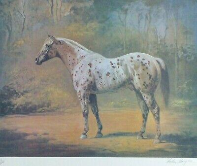Hand Numbered /& Signed Helen Hayse Secretariat 1987 Lithograph Print Art //500