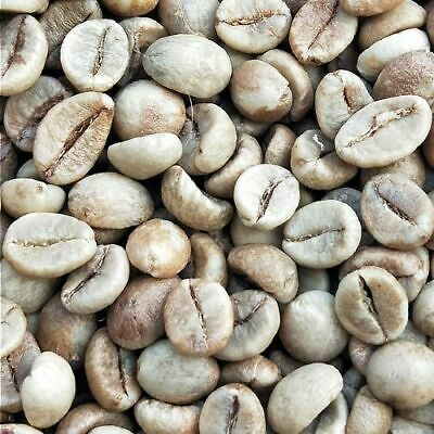 green coffee beans- INDIA PARCHMENT AB -specialty grade ROBUSTA coffee beans