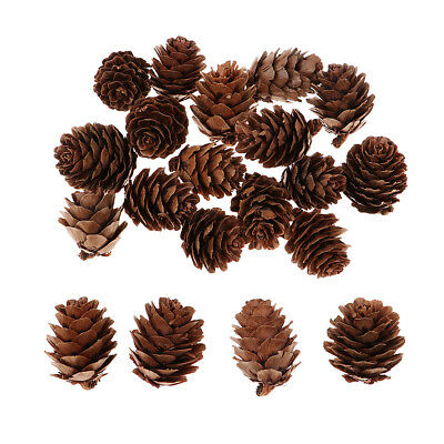 Natural Pine Cones Ornament Tree Party Hanging Decoration Holiday Home Decor