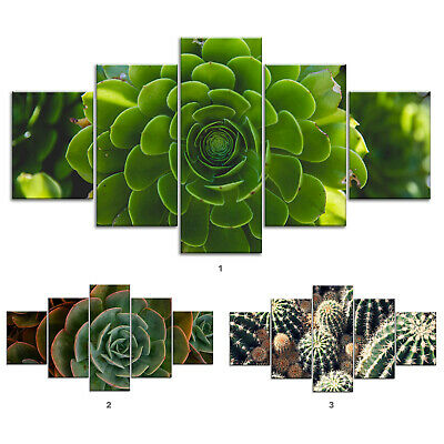 Green Cactus Plants Canvas Print Painting Framed Home Decor Wall Art Poster 5Pcs