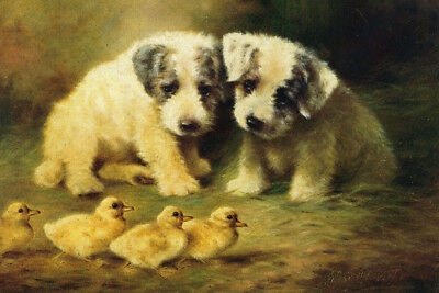 Sealyham Terrier Dogs Puppy by Lilian Chevoit 1890s  LARGE New Blank Note Cards
