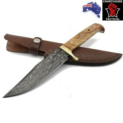 Handmade Hunting Knife, Damascus Blade, Walnut Wood Brass Handle, Leather Sheath