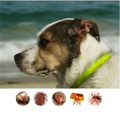 Anti Repel Tick Flea Tick Dog Cat Pets Collar Protection Against For People D
