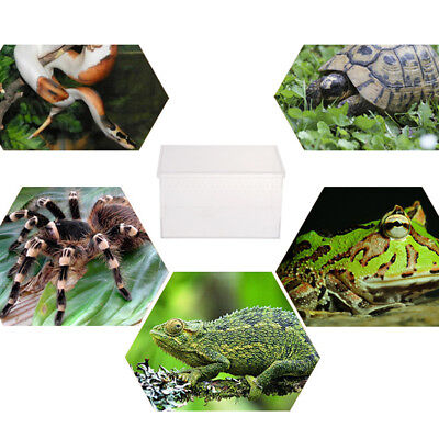 Reptile Terrarium & Amphibian Habitat for Mini Pet Houses Acrylic Box