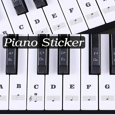 Durable Universal Transparent Piano 54/61/88 Key Note Keyboard Sticker Decals