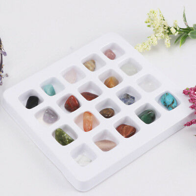 Probe Geologie Science Teaching AIDS Rock & Mineral 20pcs Natural Crystal Rock