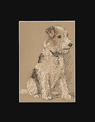 """Wire Fox Terrier Cute  Dog by Lucy Dawson 8X10"""" Matted Sepia Print 1940"""