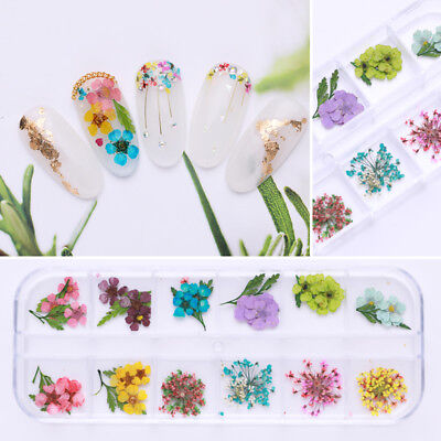 Dried Flowers Nail Art 3D Decoration Lovely Five Petal Flowers Manicure DIY Tool